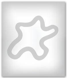 pechat-paket-234x270